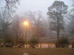 Fog over Kendall Park
