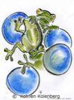 FrogsInWashingMachine