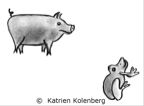 Pig&Frog