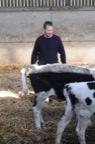 Antoon Devreese  - bio melkveehouder